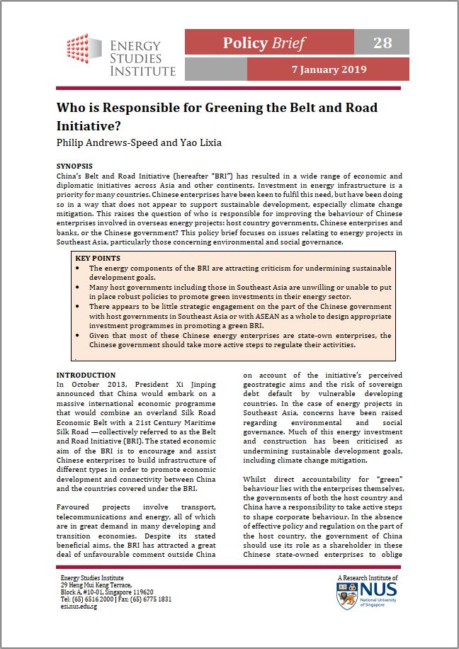 Who is Responsible for Greening the Belt and Road Initiative?