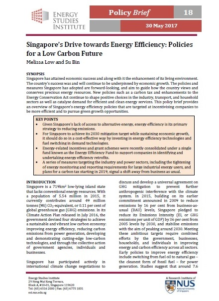 Singapore's Drive towards Energy Efficiency: Policies for a Low Carbon Future
